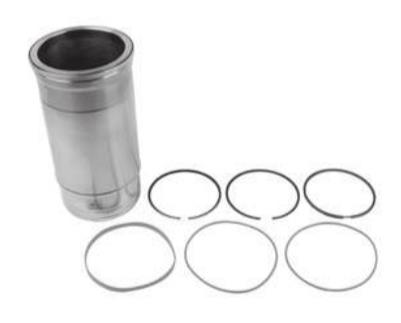 Cylinder Liner With Piston Rings